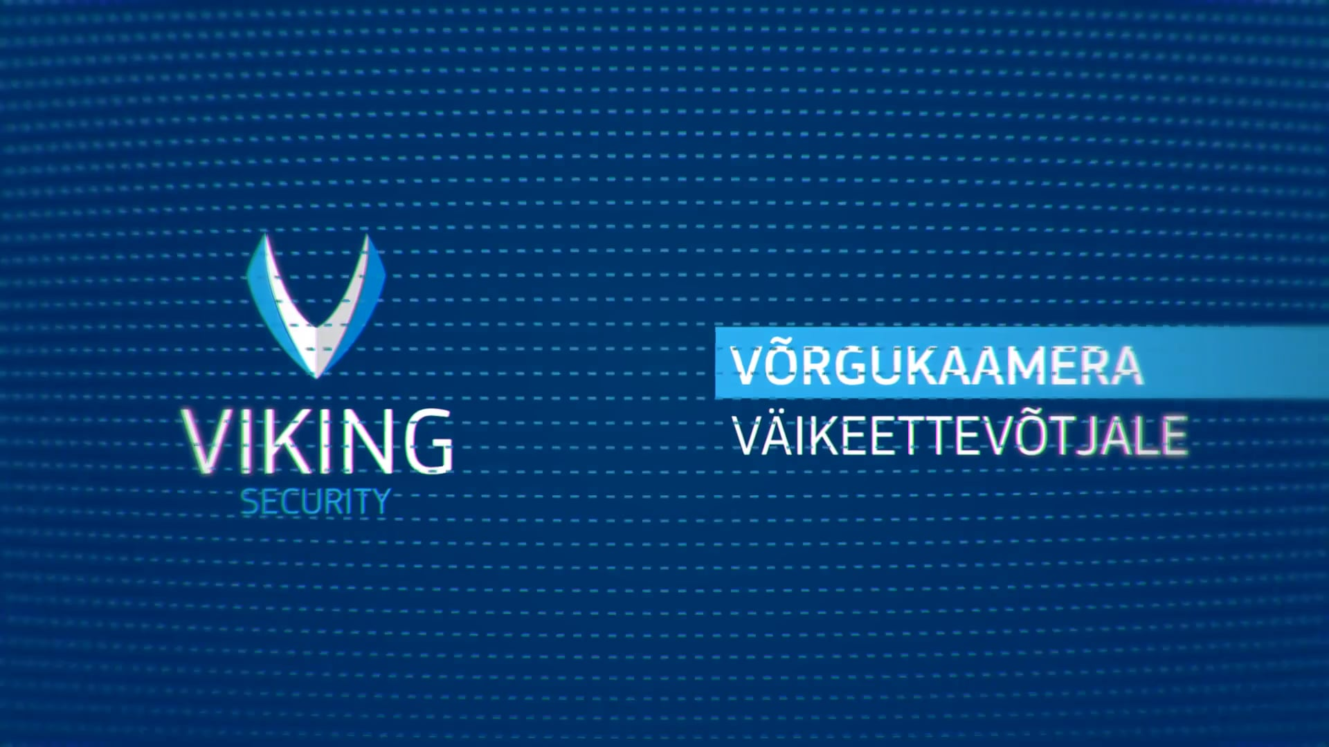 Viking-Security